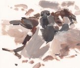 Dust bathing sparrows painting by Esther Tyson